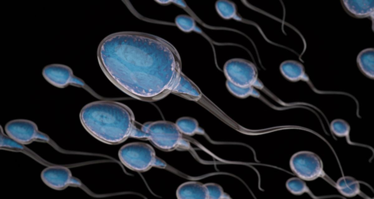 Ibux kan være knyttet til nedsatt sædkvalitet