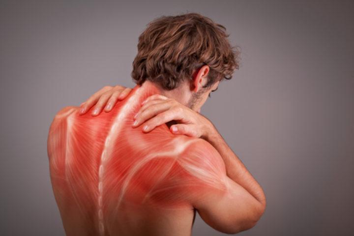 Vi behandler muskel og skjelettplager
